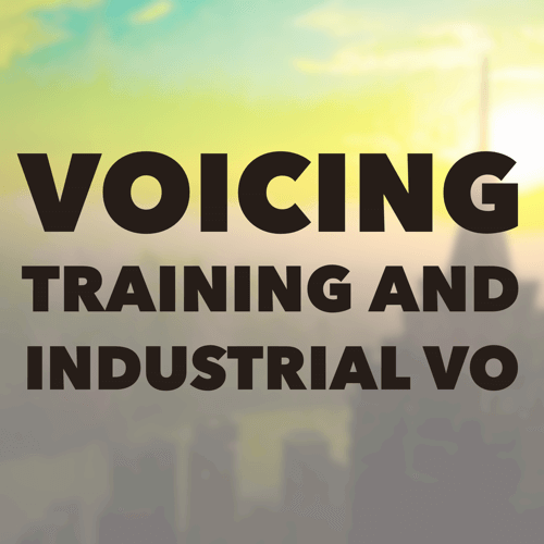 The business to business and training market is calling you. Training videos, website how-to's, software installation, management and industrial process training are but a few of the products in this category, and the marketplace for these types of VO work span both union, non-union, domestic and international boundaries.
